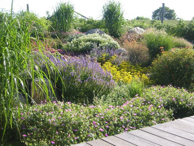 Genießen Sie diese Garten- und Landschafts-Impressionen.