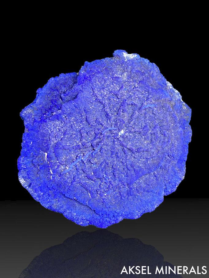 AM668 - Azurite - Malbunka Copper Mine, Areyonga, Gardiner Range, Northern Territory, Australie - 83x64mm
