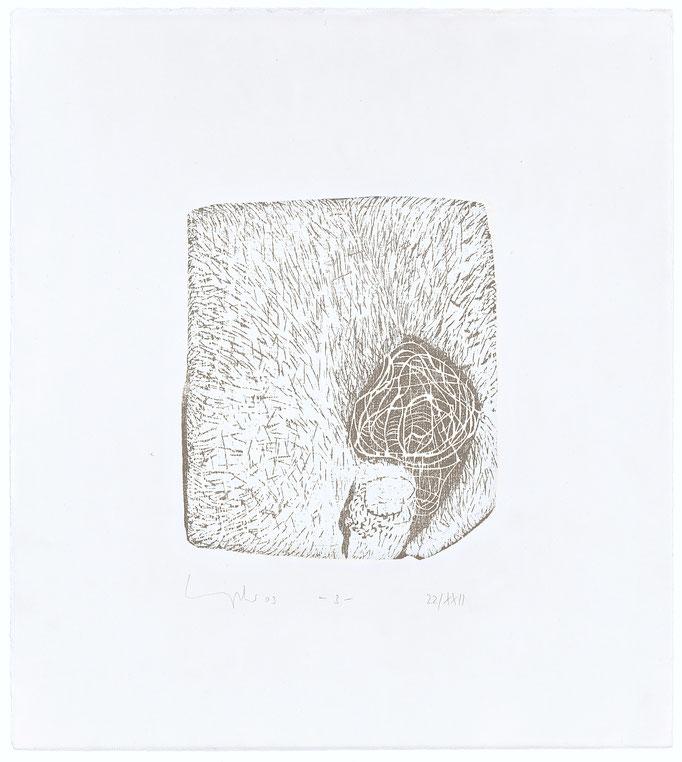 Der elfte Spruch, 2003 Holzschnitt auf Alt Nürnberg, 47x42 cm, Blatt 2, Aufl.22