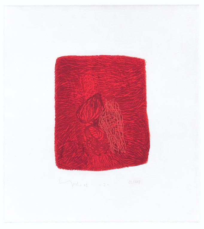 Der elfte Spruch, 2003 Holzschnitt auf Alt Nürnberg, 47x42 cm, Blatt 7, Aufl.22