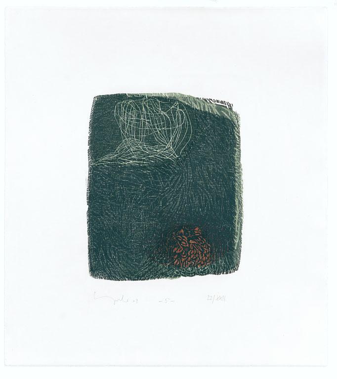 Der elfte Spruch, 2003 Holzschnitt auf Alt Nürnberg, 47x42 cm, Blatt 5, Aufl.22