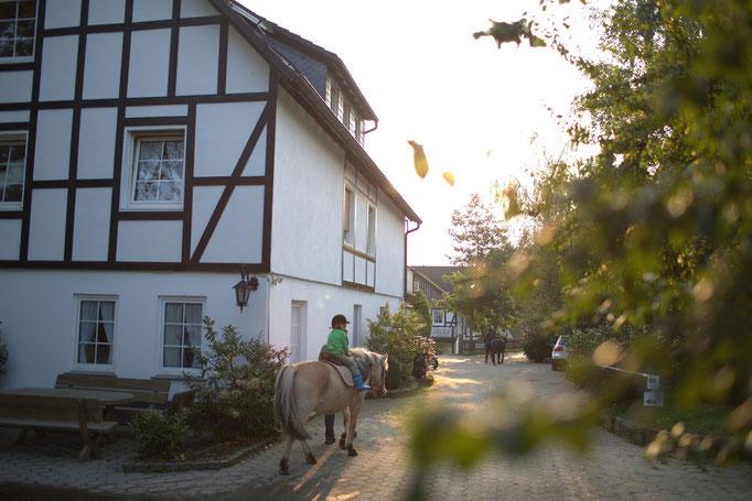 geführtes Reiten im Urlaub im Sauerland