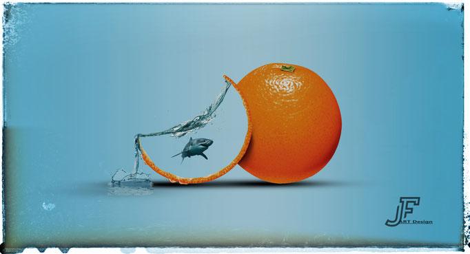 Orangenhai