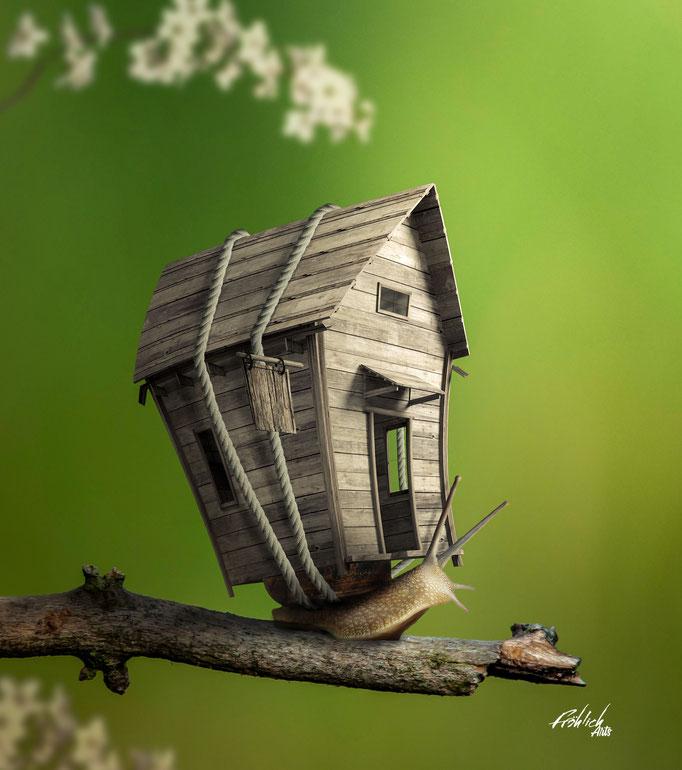 Snale House