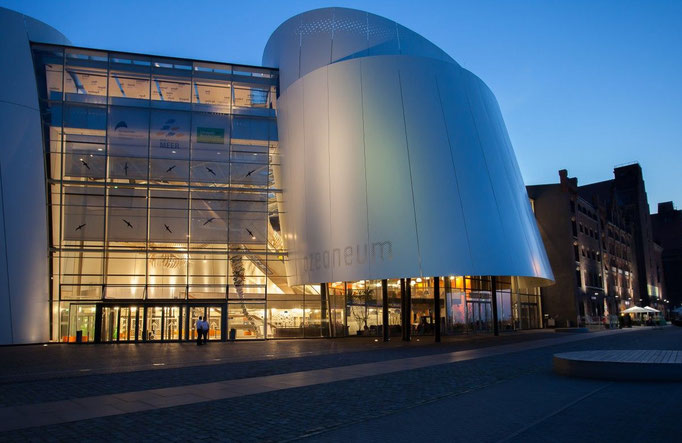 the Ozeaneum at the blue hour