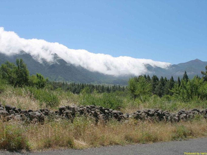 """""""Die Wolke"""" - Passatwolke, die sich an der Westküste auflöst"""
