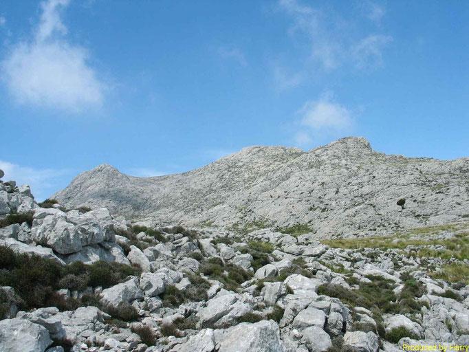 Doppelspitze der Massanella  1365m
