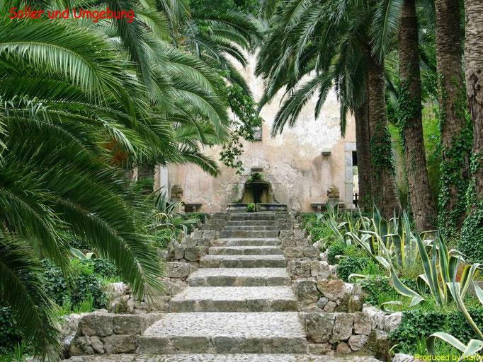 kleiner botanischer Garten auf dem Weg von Palma - Solller - am Tunnel