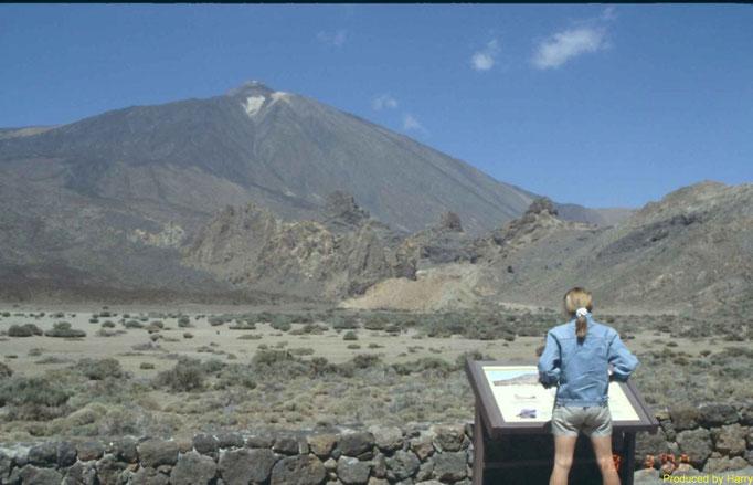 der Teide-Gipfel 3718m   -  Standort auf ca. 2000m