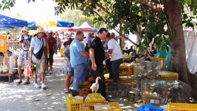 Auf dem Markt in St Paul