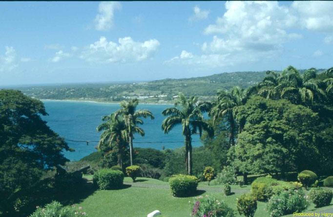 Scarborough - die Hauptstadt von Tobago