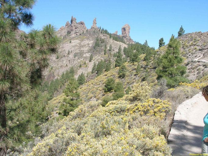 der 1813 Meter hohe Roque Nublo