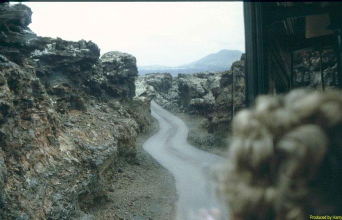 ... mit dem Bus durch die erstarrte Lava