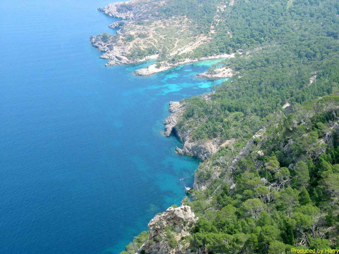 Wanderung am Cap d'es Pinar  -   Halbinsel Alcutia