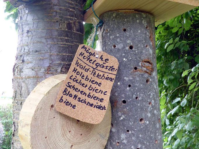 Wildbienenprojekt: Bau von Nisthilfen