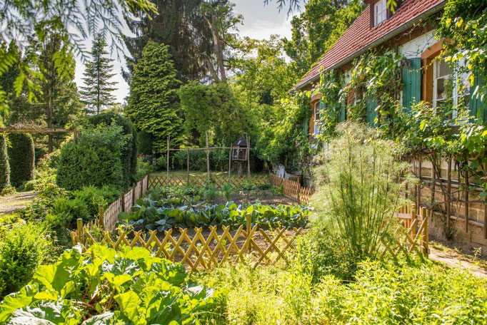 Gemüsegarten Altes Forstamt