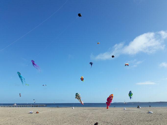 Drachen am Strand der Ostsee