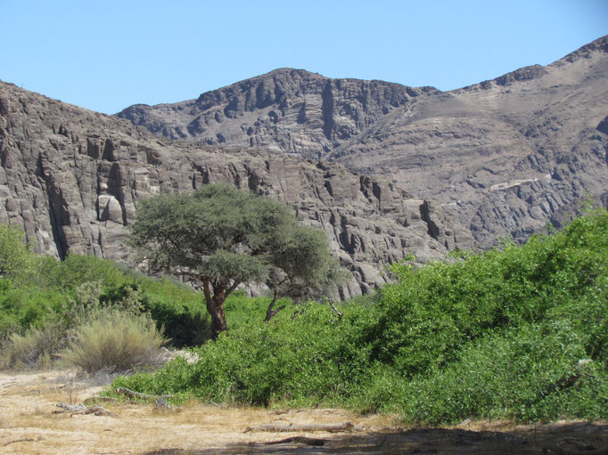 im Flussbett des Huanib