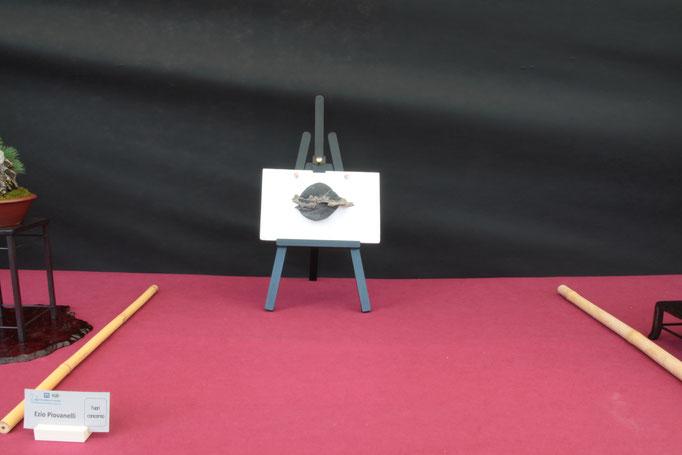 Suiseki - Ezio Piovanelli