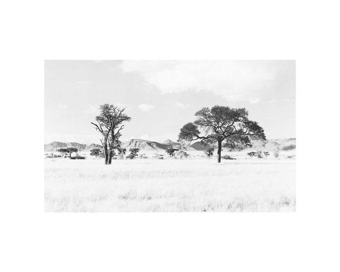 Twyfelfontein Namibia, Editions-Blatt 33x49cm / 50x70, Auflage 10