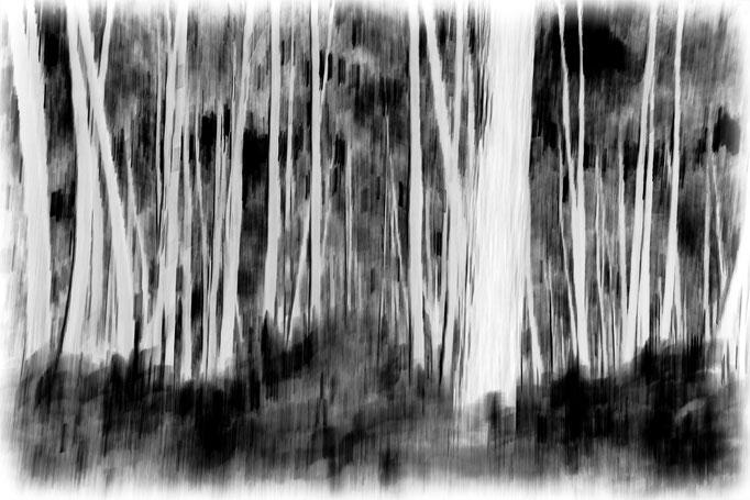 Ghislaine Chapeau Photo sélectionnée