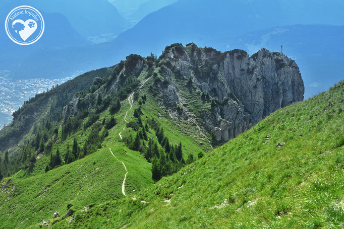 Nature.Impulse - Bayerische Alpen
