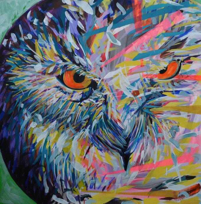 Owllic , Acrylic on canvas 90 x 90 cm