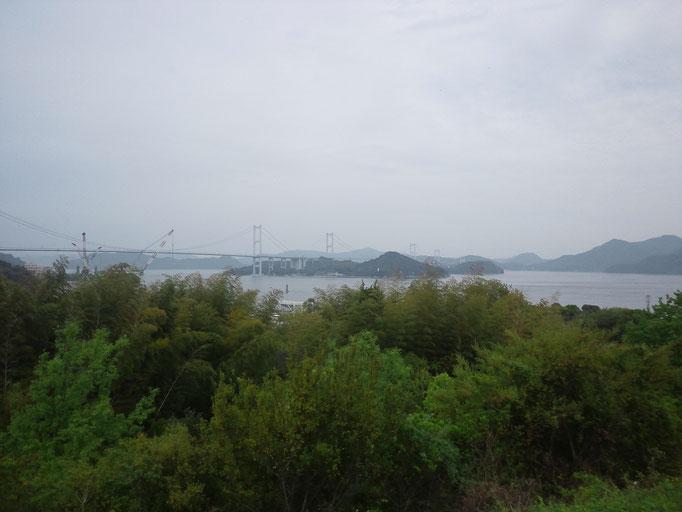 テニサポ 来島大橋