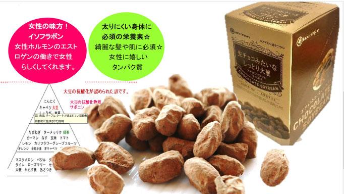 生チョコみたいなしっとり大豆,生チョコ,大豆,SOY,チョコ,ちょこ,そい,ソイ,健康チョコ,乳アレルギー対応チョコ,