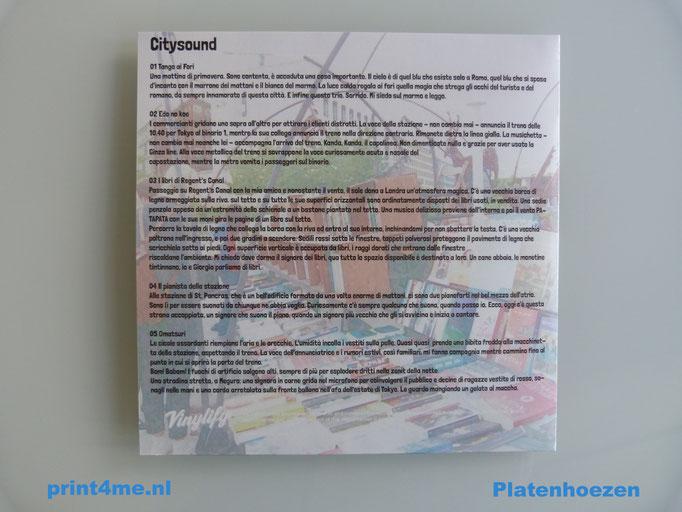 12-inch-platen-hoezen-printen