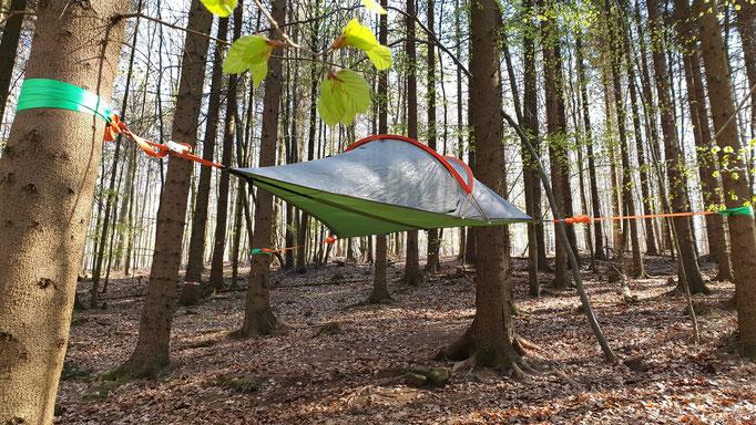 Baumzelt Rottanne Frühjahr 2019. Bild: Baumhaushotel Solling.