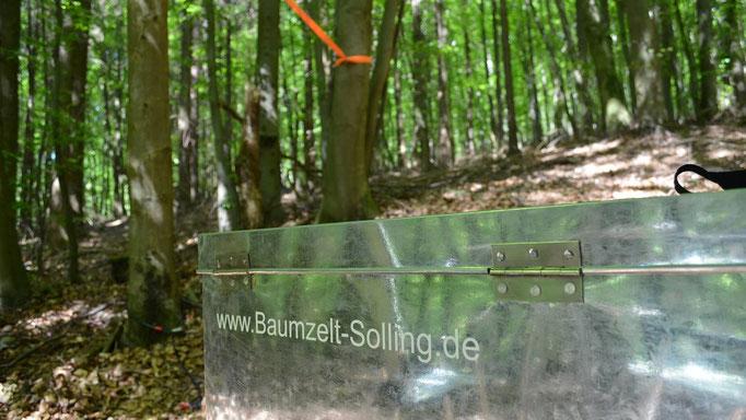 Baumzelt Fichte 3, Bild: Baumhaushotel Solling.