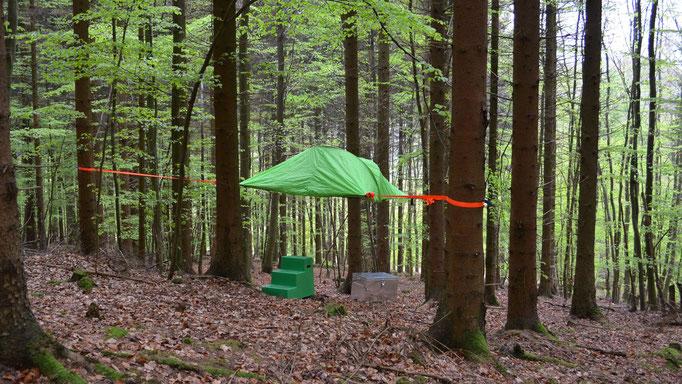 Baumzelt Rottanne, Bild: Baumhaushotel Solling.