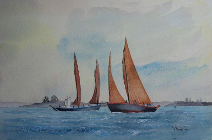Golfe du Morbihan. Sinagots