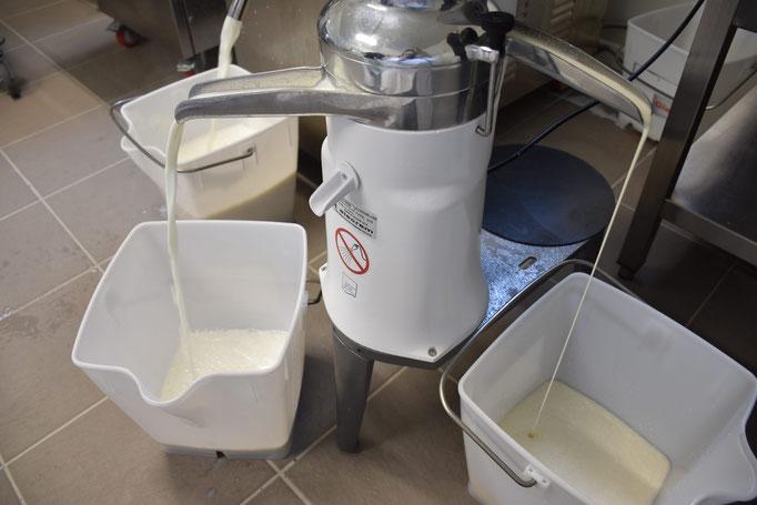 L'écrémage, à gauche le petit lait et à droite la crème.