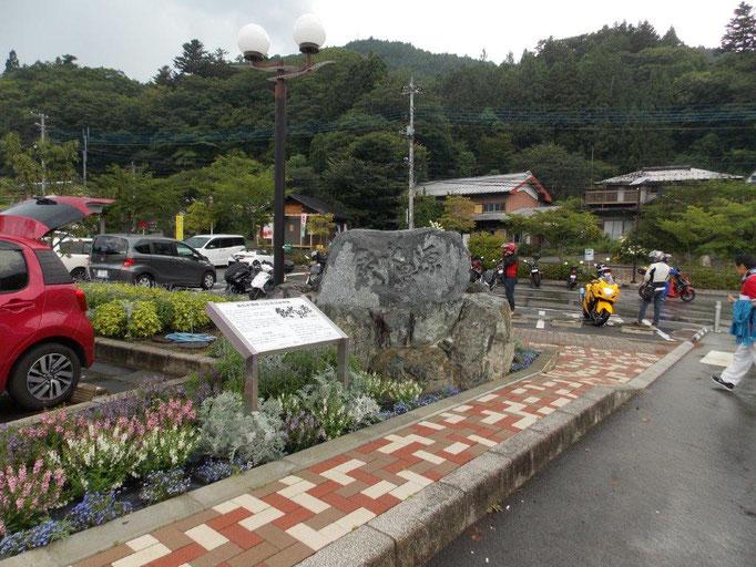 飲水思源の碑と記念木のヨコハマヒザクラ