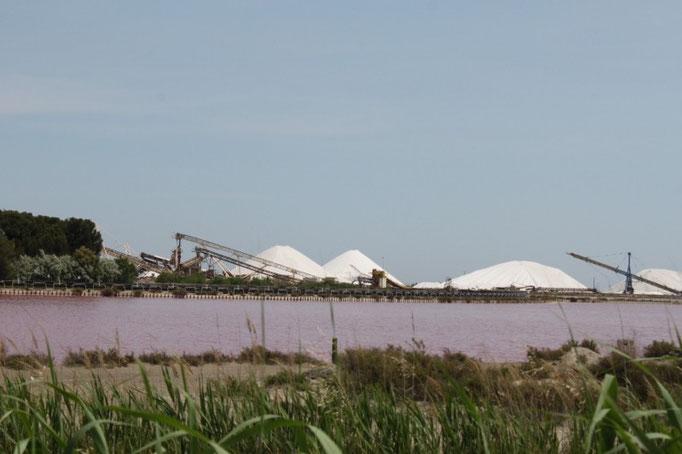 Salinen in der Camargue