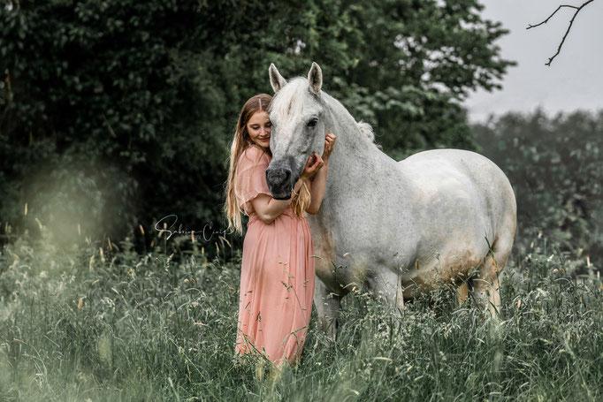 BIld weißes Pony