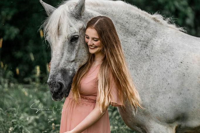 Weißes Pferd im Gras