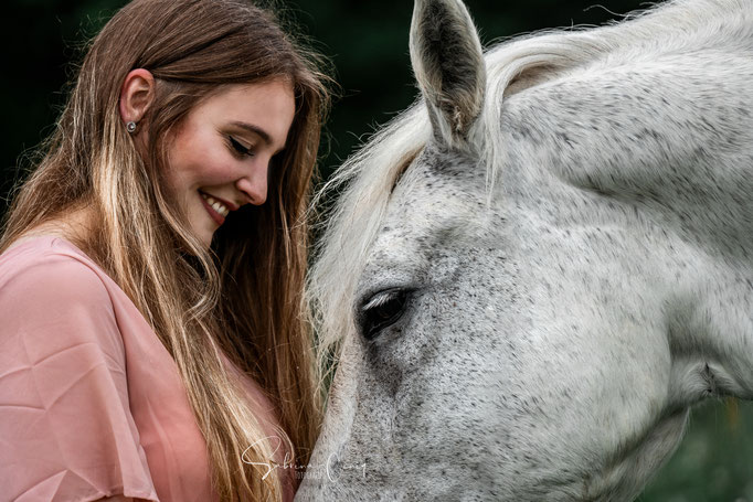 Close Up weißes Pferd