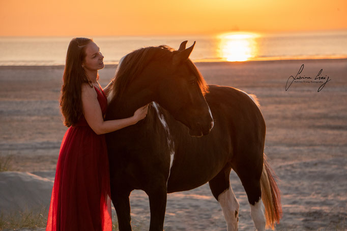 Geschecktes Pferd STrand