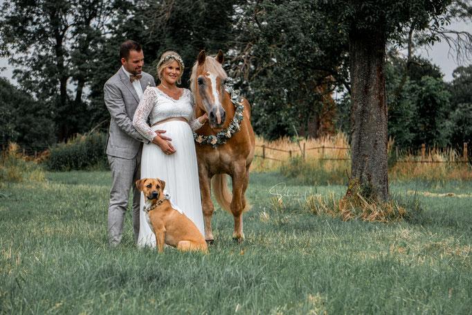 Haflinger Hochzeit