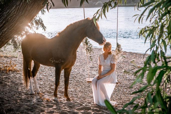 Pferdebild mit Schaukel