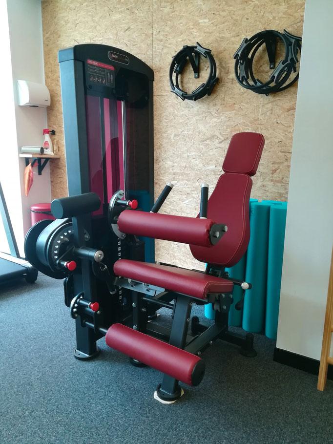 Chaise a Quadriceps / Ischio-jambier