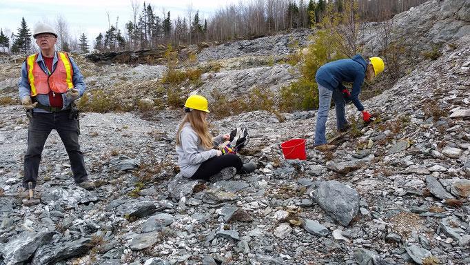 Recherche de pyrites cubiques