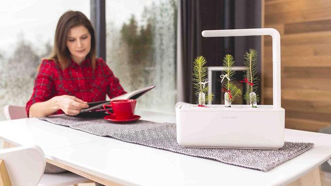 Smart Garten für deine Kräuter