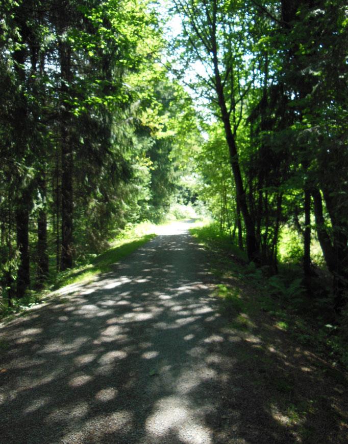 Praktisch - der Radweg direkt vorm Haus - Auf geht´s!