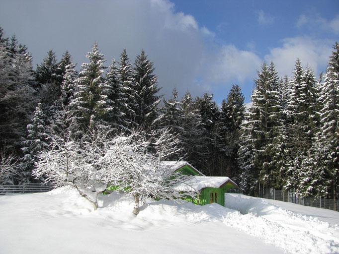 Unser Bienenhaus im Schneekleid