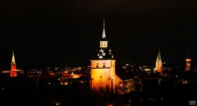 Blick vom Kalkberg auf die Michaelis-Kirche Lüneburg