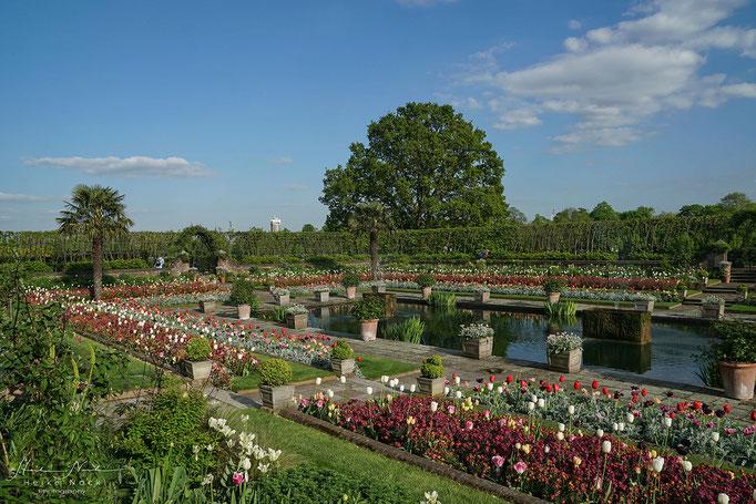 """The """"Sunken Garden"""" vom Kensington Palast"""